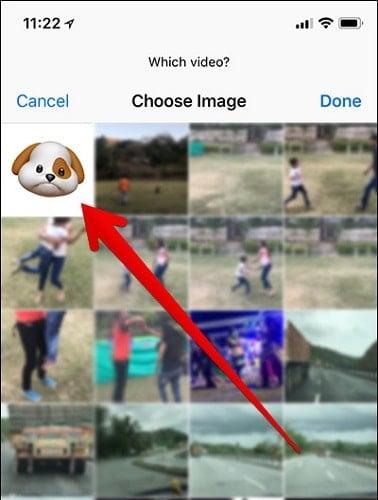 chia sẻ Animoji trên iphone x
