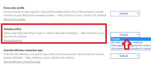 google chrome tự động phát video